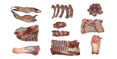 ponders lamb cuts
